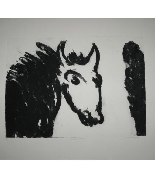 Michael-Mlulcahy_Wilde-Horse-2-6-Carborundum-Print,100-x-79-cms_2010