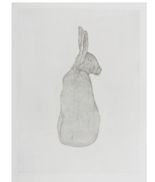 Valerie-Hammond—Hare